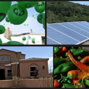new mexico green living